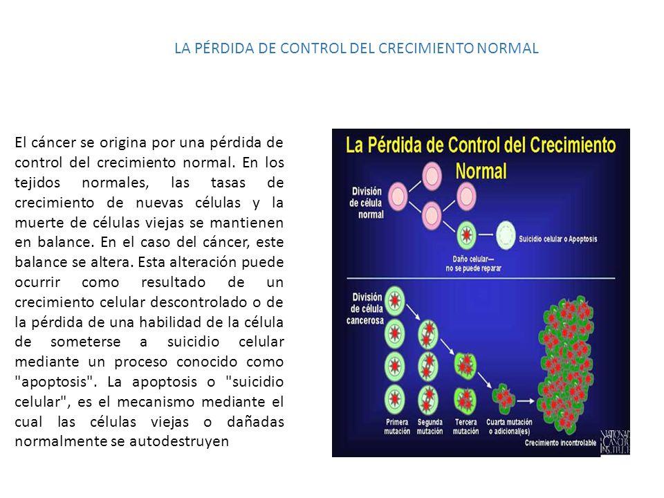 LA PÉRDIDA DE CONTROL DEL CRECIMIENTO NORMAL