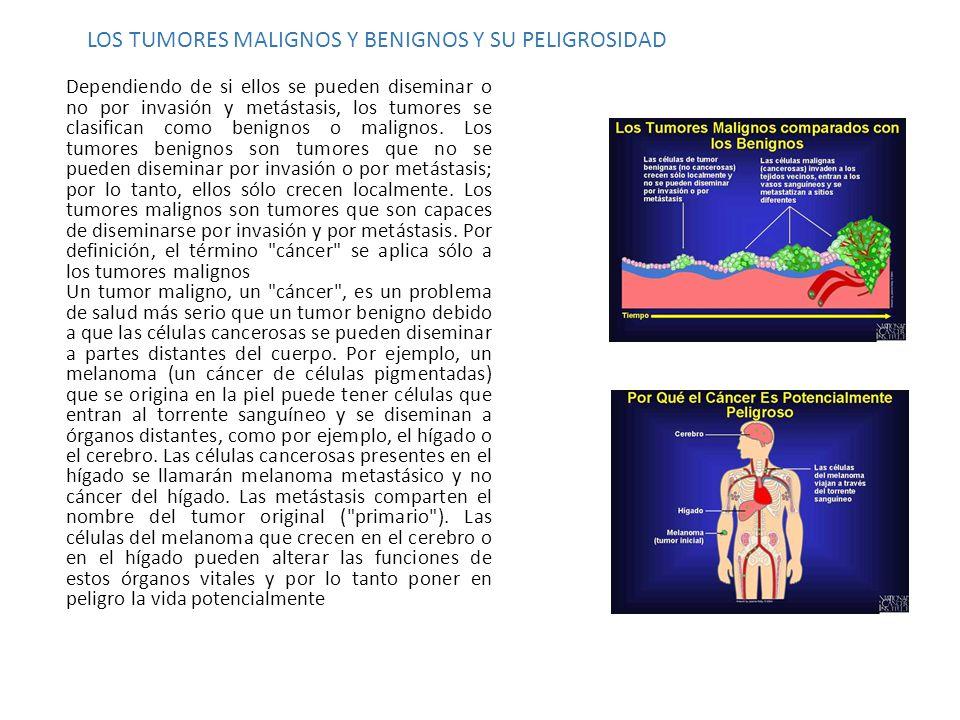 LOS TUMORES MALIGNOS Y BENIGNOS Y SU PELIGROSIDAD