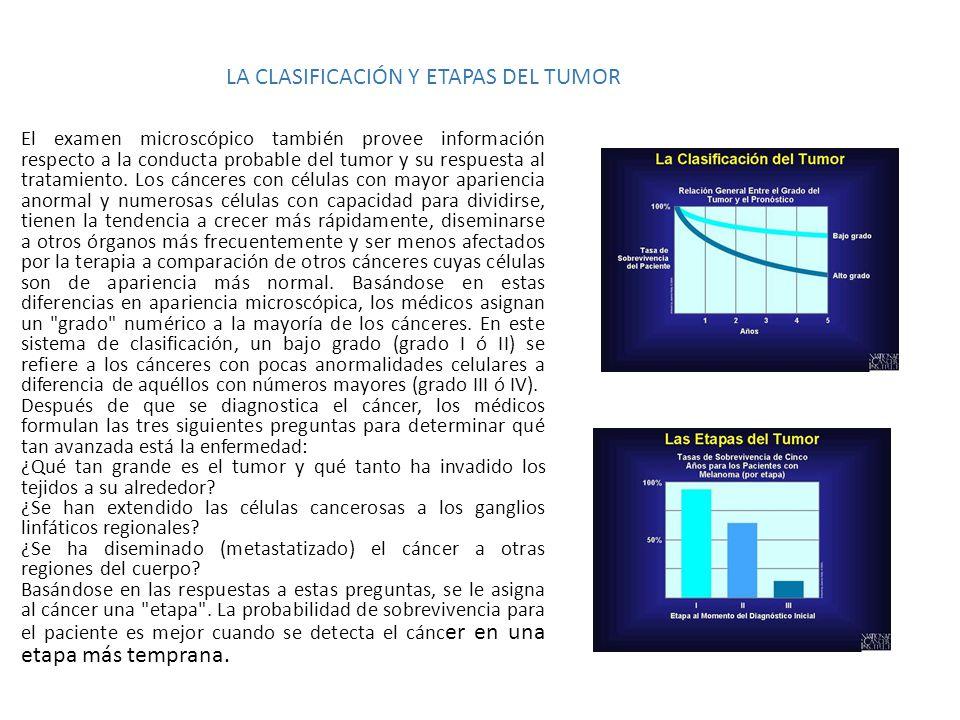 LA CLASIFICACIÓN Y ETAPAS DEL TUMOR