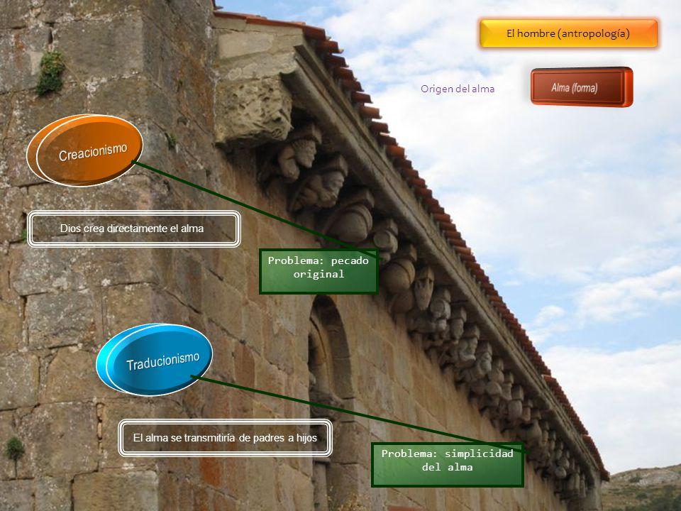 Creacionismo Traducionismo El hombre (antropología) Alma (forma)