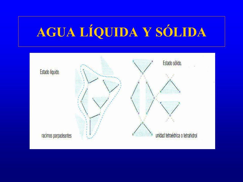 AGUA LÍQUIDA Y SÓLIDA