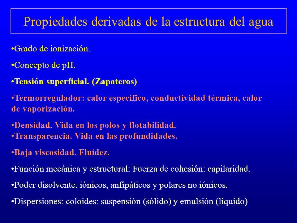 Propiedades derivadas de la estructura del agua
