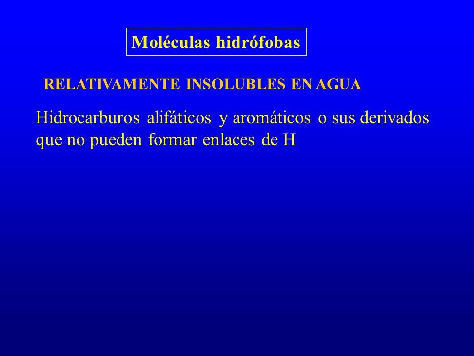 Moléculas hidrófobas RELATIVAMENTE INSOLUBLES EN AGUA.