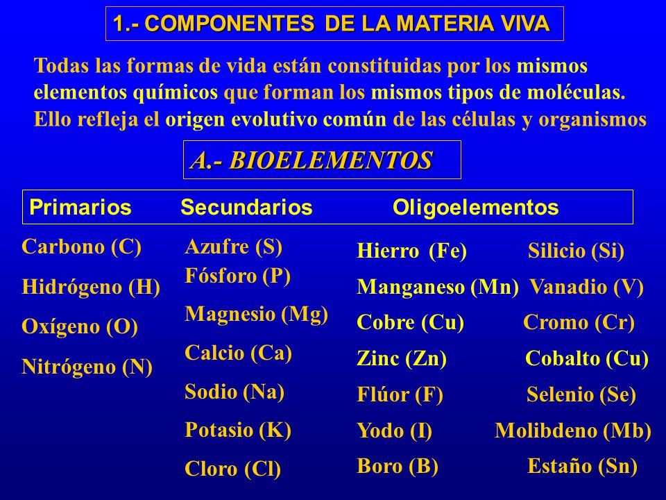 A.- BIOELEMENTOS 1.- COMPONENTES DE LA MATERIA VIVA