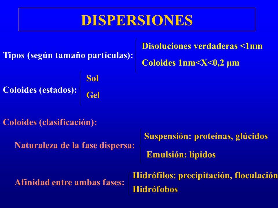DISPERSIONES Disoluciones verdaderas <1nm