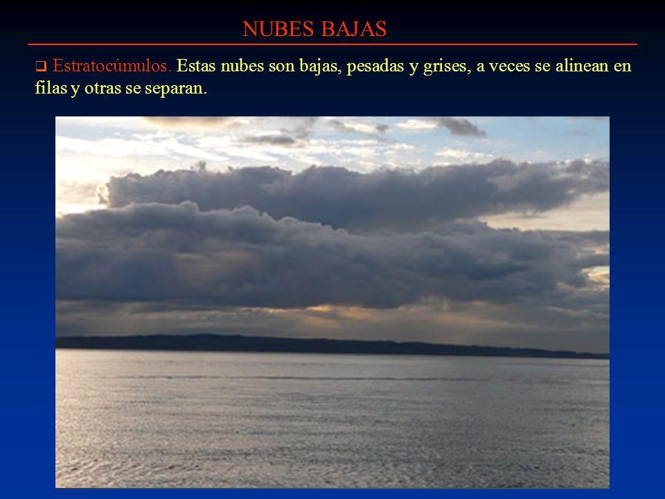 NUBES BAJAS Estratocúmulos.