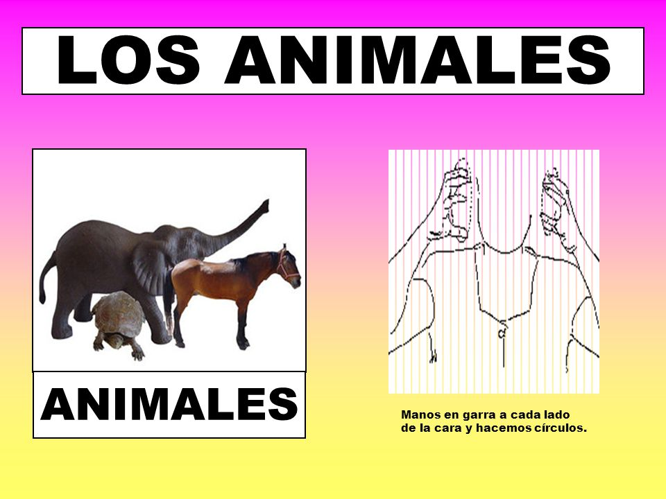 LOS ANIMALES ANIMALES Manos en garra a cada lado