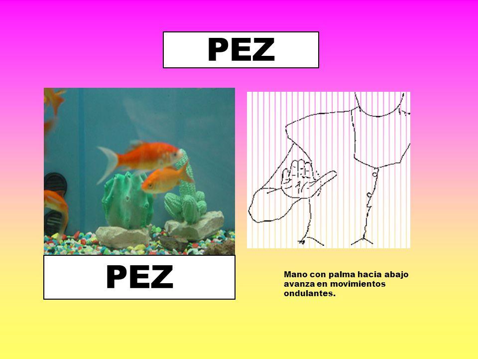 PEZ PEZ Mano con palma hacia abajo avanza en movimientos ondulantes.