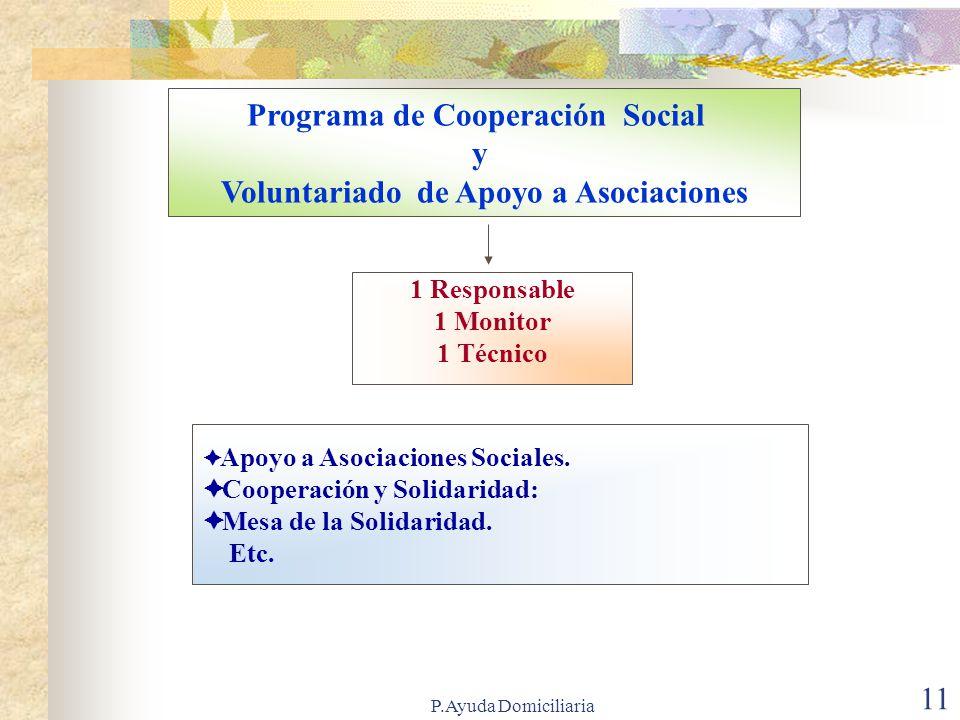 Programa de Cooperación Social Voluntariado de Apoyo a Asociaciones