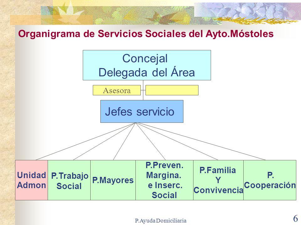 Concejal Delegada del Área Jefes servicio