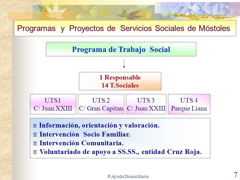 Programa de Trabajo Social