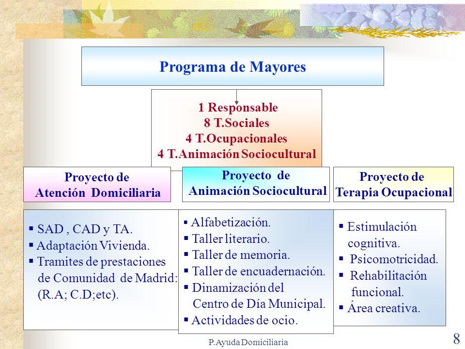 Programa de Mayores 1 Responsable 8 T.Sociales 4 T.Ocupacionales