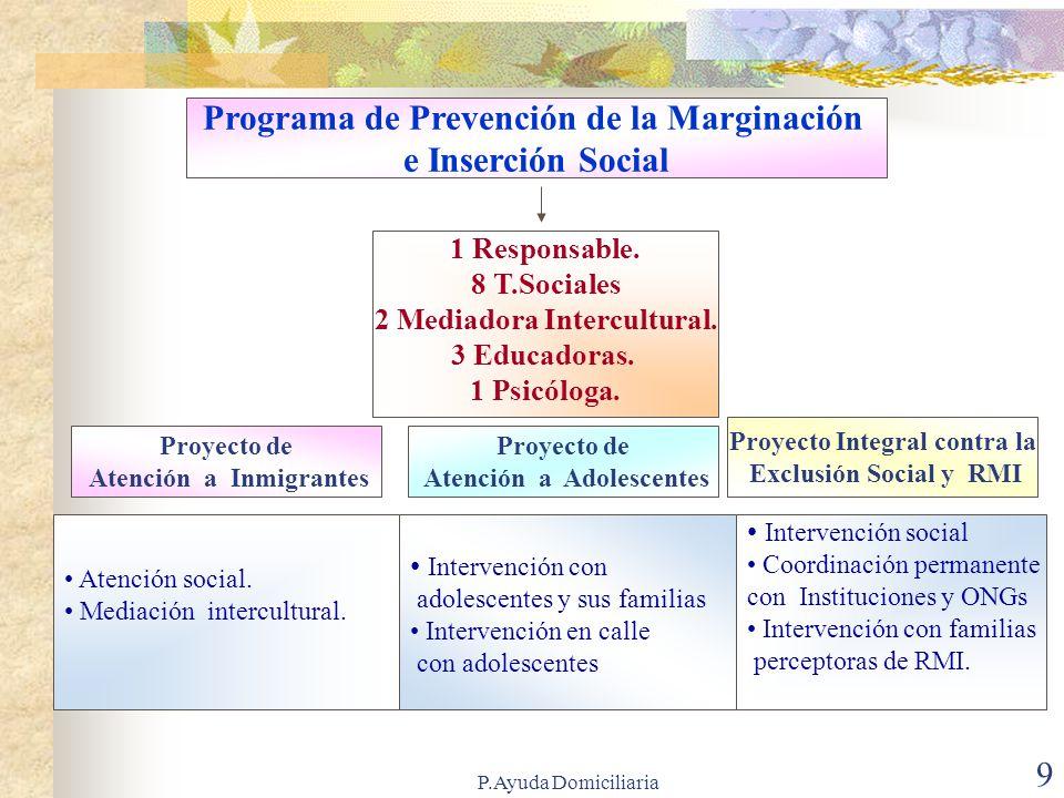 Programa de Prevención de la Marginación e Inserción Social