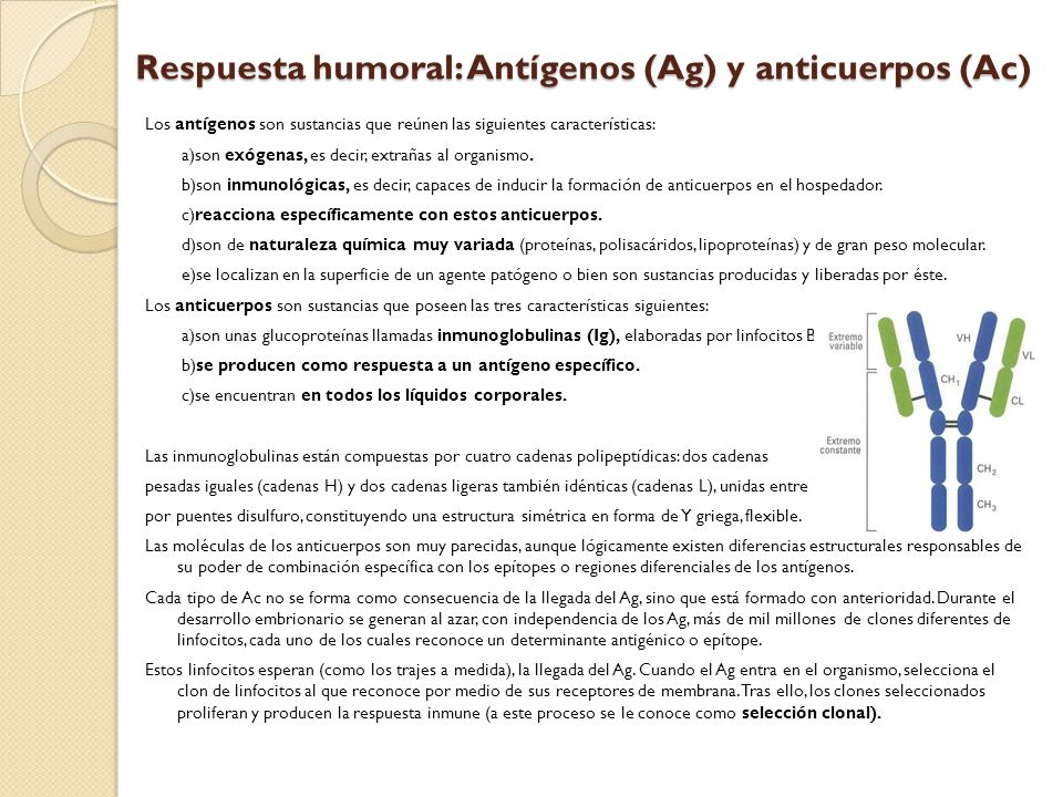 Respuesta humoral: Antígenos (Ag) y anticuerpos (Ac)