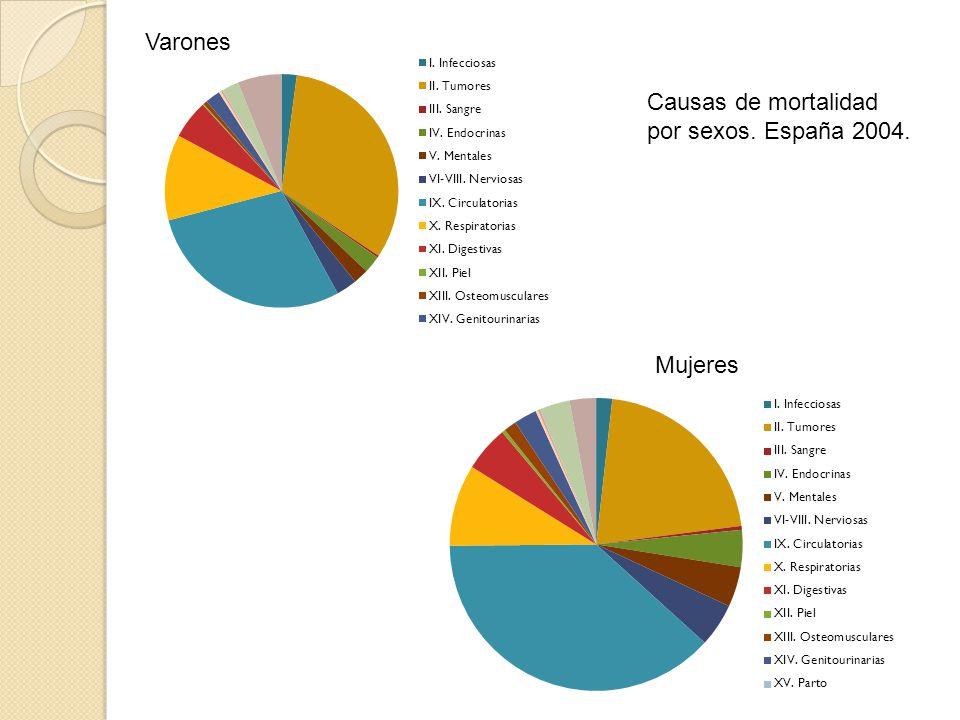 Varones Causas de mortalidad por sexos. España 2004. Mujeres