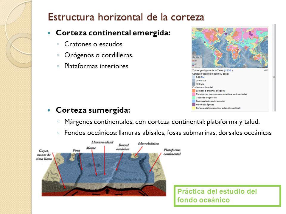 Estructura horizontal de la corteza