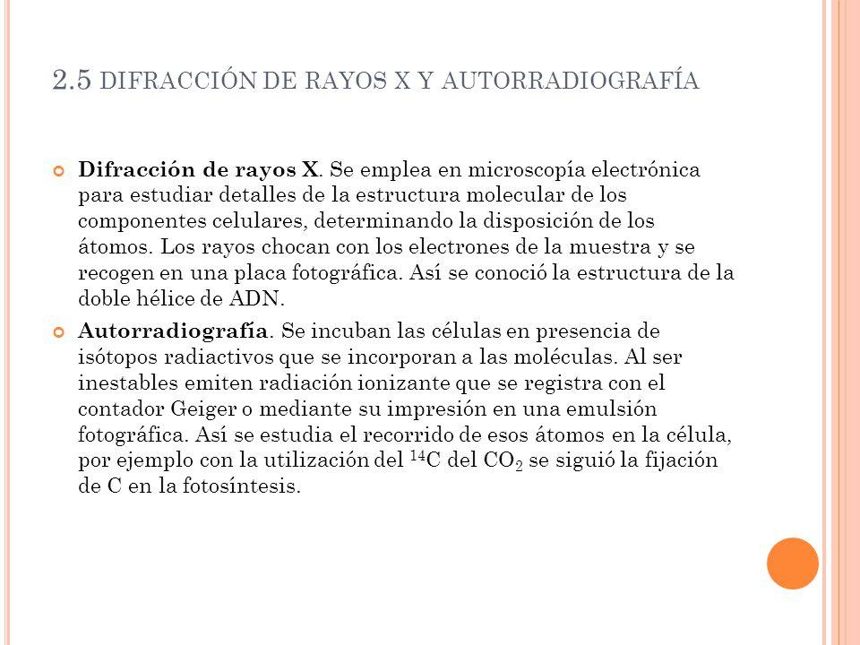 2.5 difracción de rayos x y autorradiografía