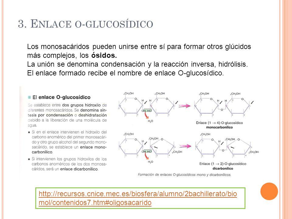 3. Enlace o-glucosídico Los monosacáridos pueden unirse entre sí para formar otros glúcidos más complejos, los ósidos.