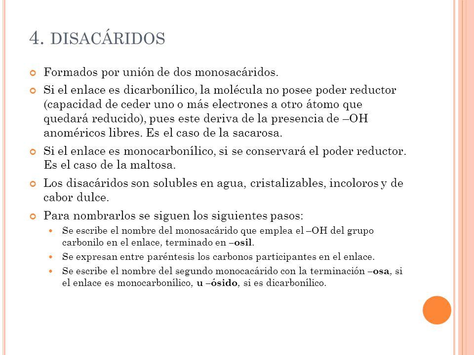 4. disacáridos Formados por unión de dos monosacáridos.