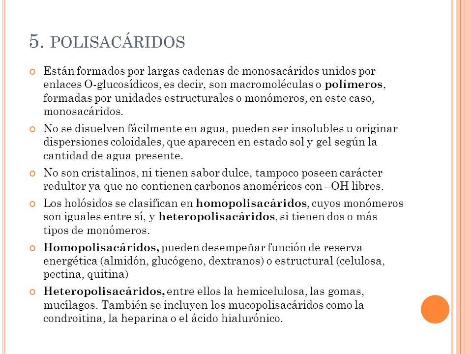 5. polisacáridos