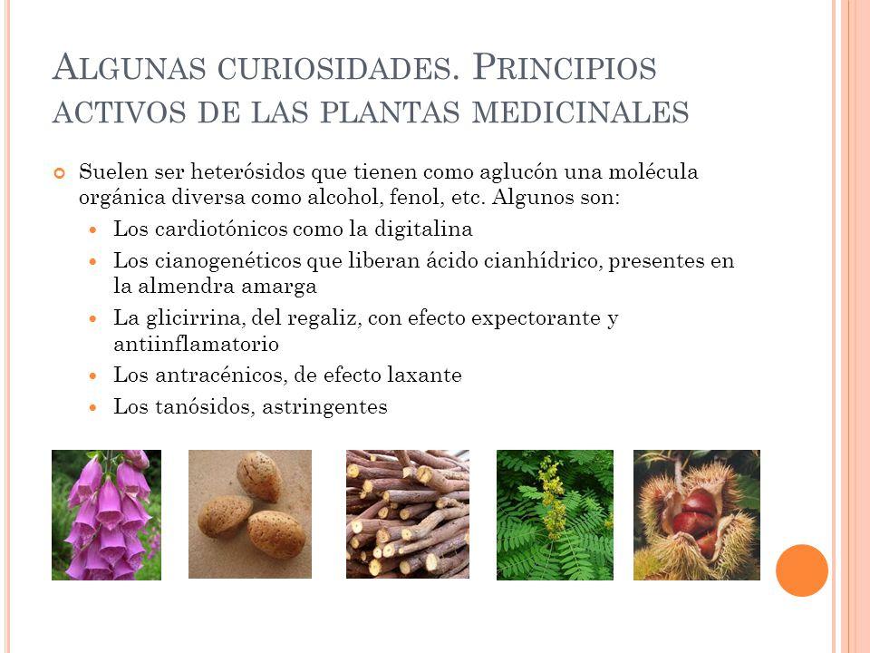 Algunas curiosidades. Principios activos de las plantas medicinales