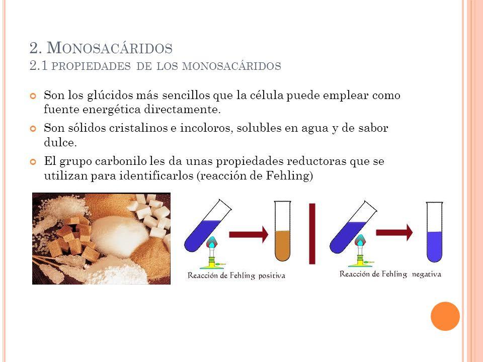 2. Monosacáridos 2.1 propiedades de los monosacáridos