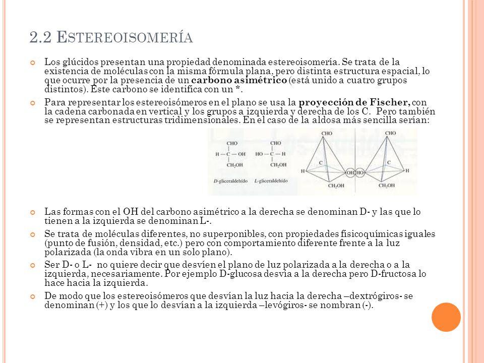 2.2 Estereoisomería