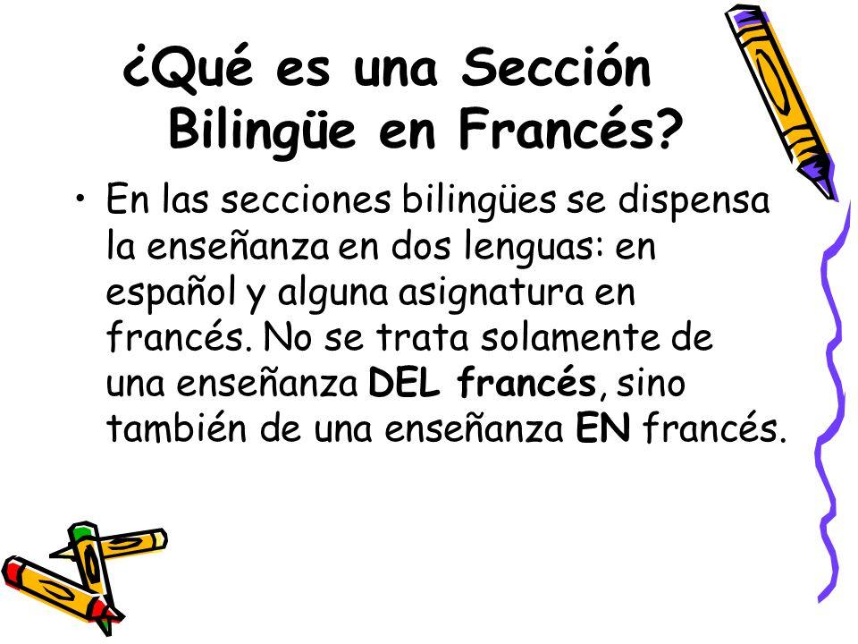 ¿Qué es una Sección Bilingüe en Francés