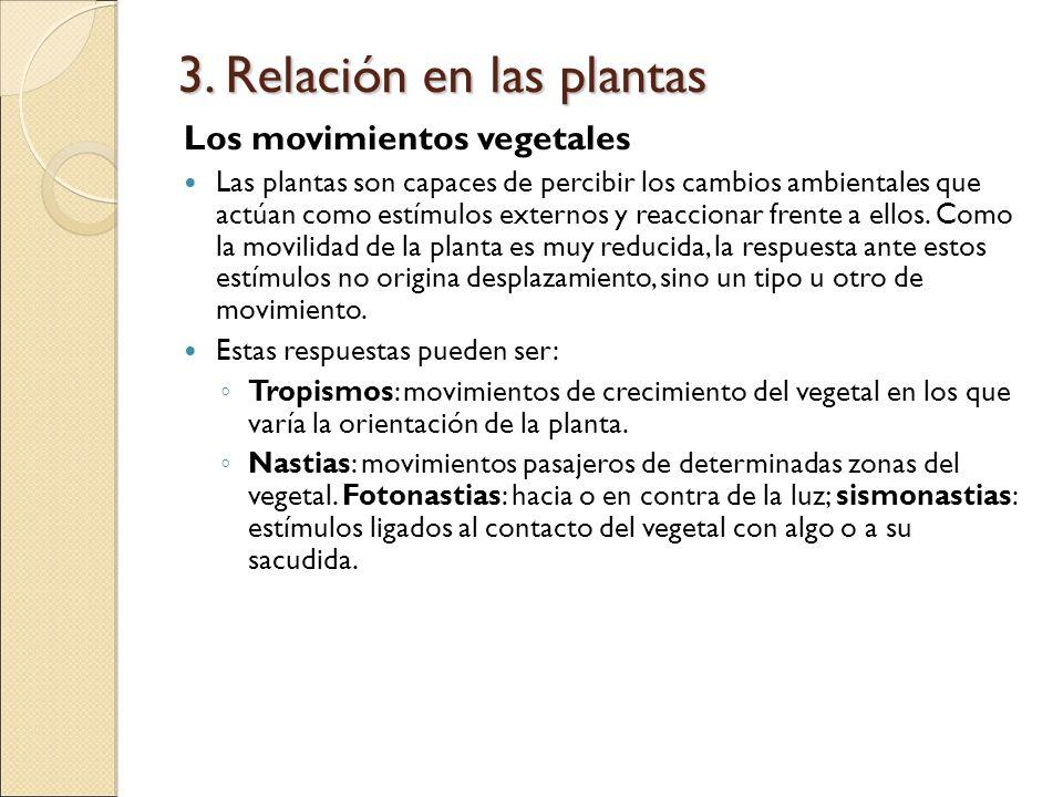 3. Relación en las plantas