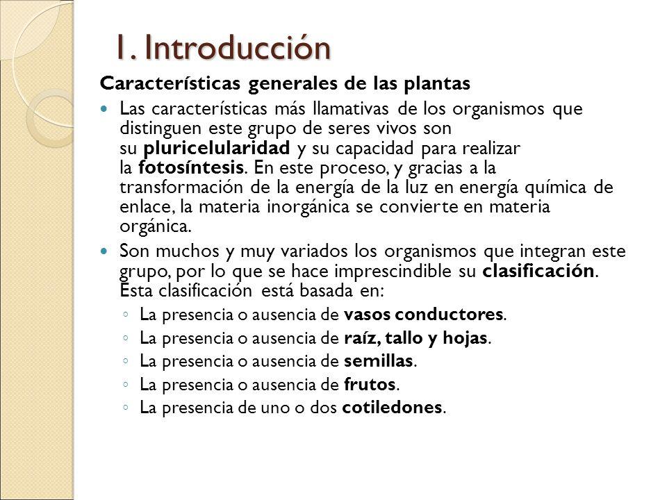 1. Introducción Características generales de las plantas