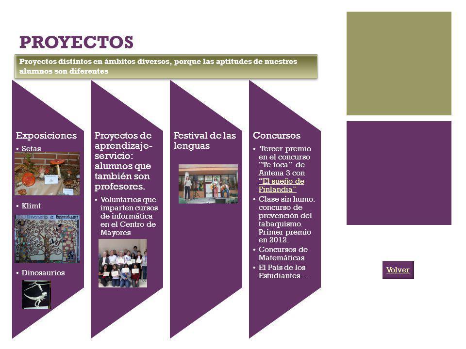 PROYECTOS Proyectos distintos en ámbitos diversos, porque las aptitudes de nuestros alumnos son diferentes.
