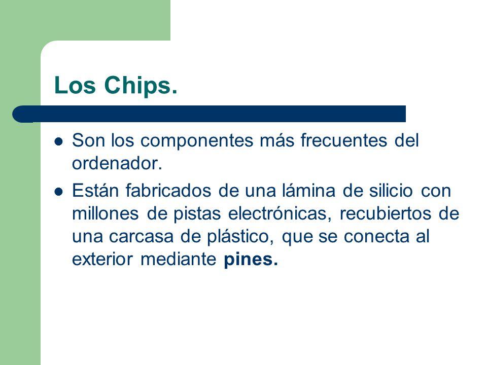 Los Chips. Son los componentes más frecuentes del ordenador.