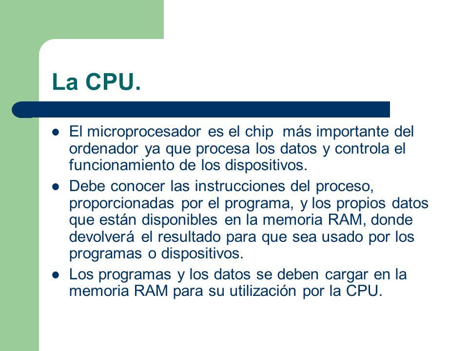 La CPU. El microprocesador es el chip más importante del ordenador ya que procesa los datos y controla el funcionamiento de los dispositivos.