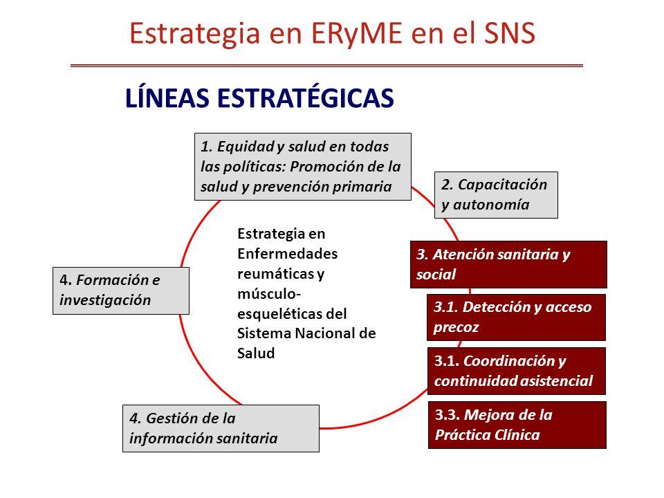 Estrategia en ERyME en el SNS