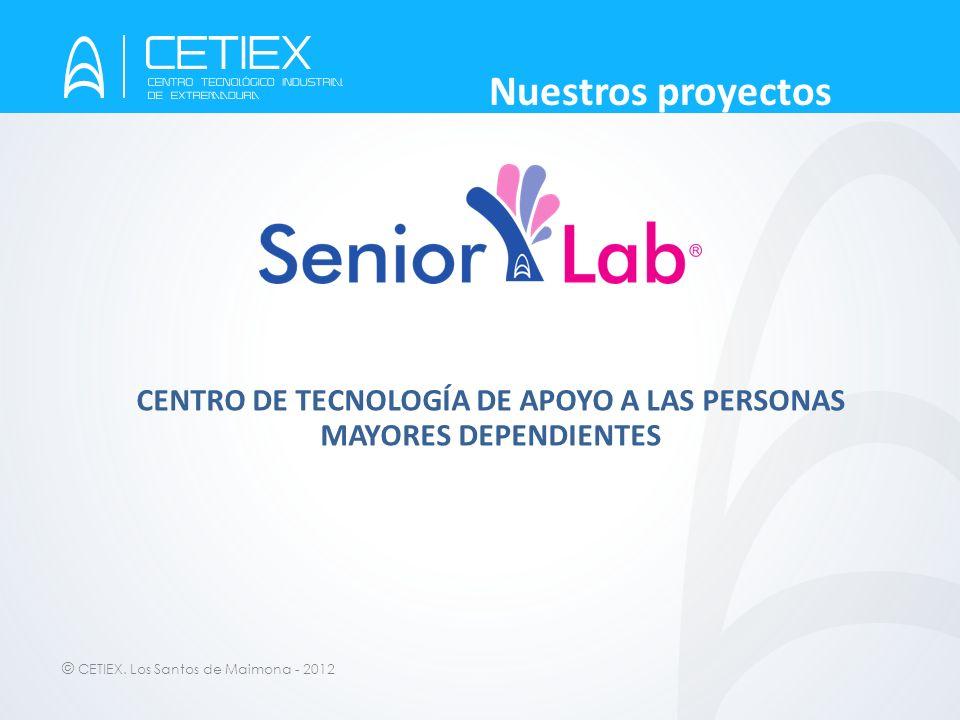 CENTRO DE TECNOLOGÍA DE APOYO A LAS PERSONAS MAYORES DEPENDIENTES