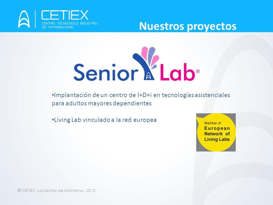 Nuestros proyectos Implantación de un centro de I+D+i en tecnologías asistenciales para adultos mayores dependientes.