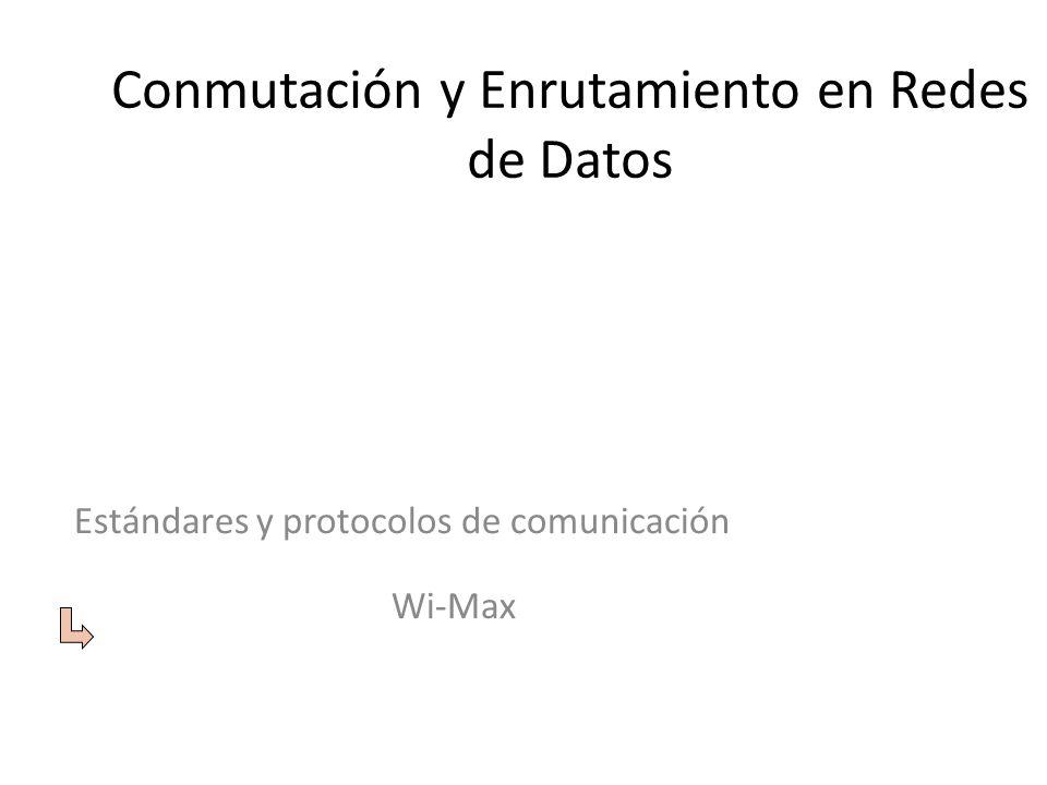 Conmutación y Enrutamiento en Redes de Datos