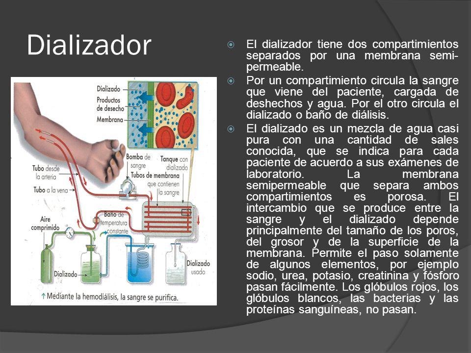 Dializador El dializador tiene dos compartimientos separados por una membrana semi-permeable.