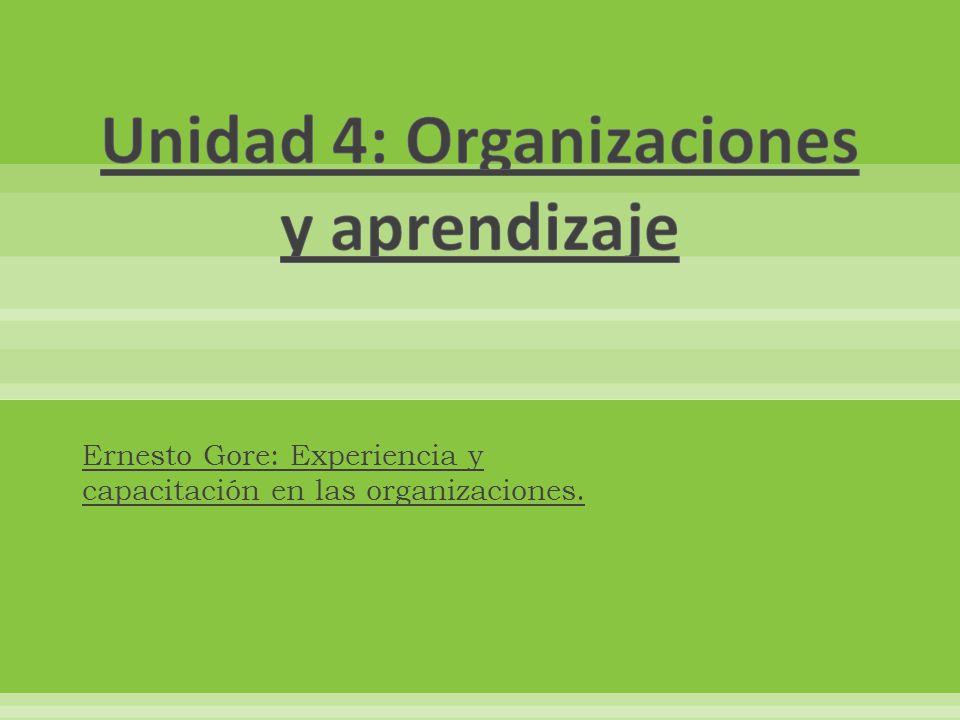 Unidad 4: Organizaciones y aprendizaje
