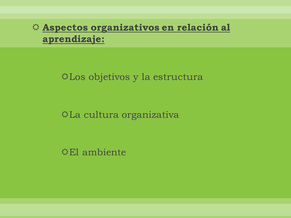 Aspectos organizativos en relación al aprendizaje: