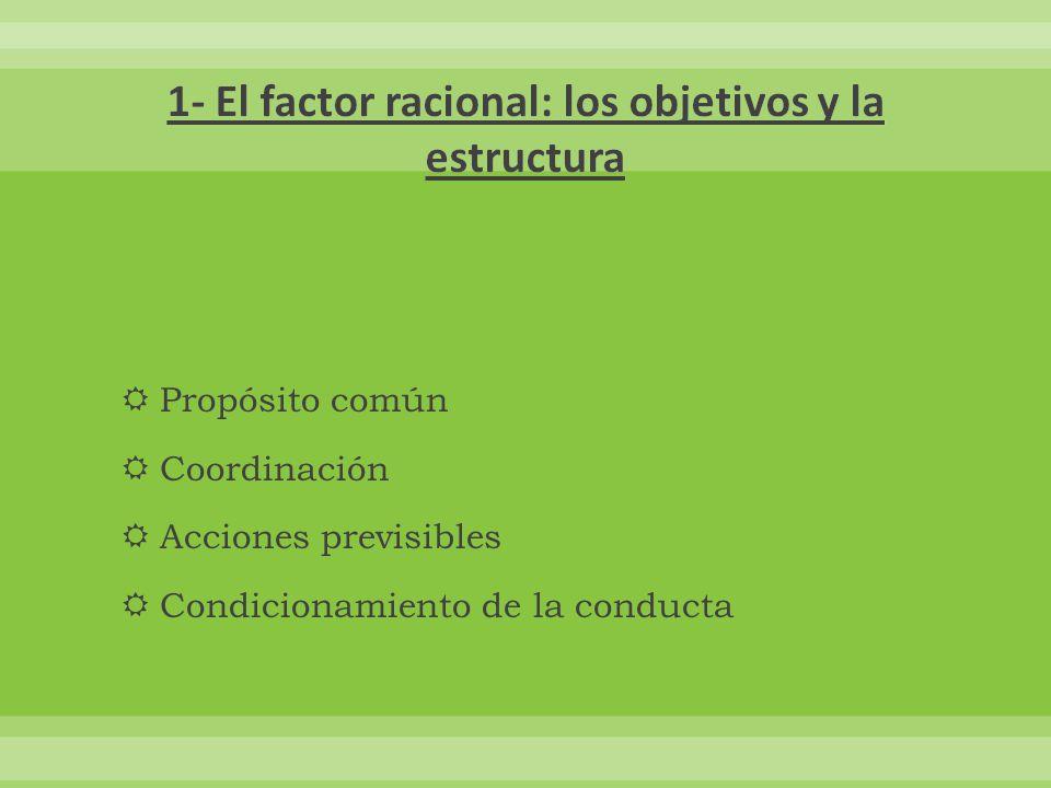 1- El factor racional: los objetivos y la estructura