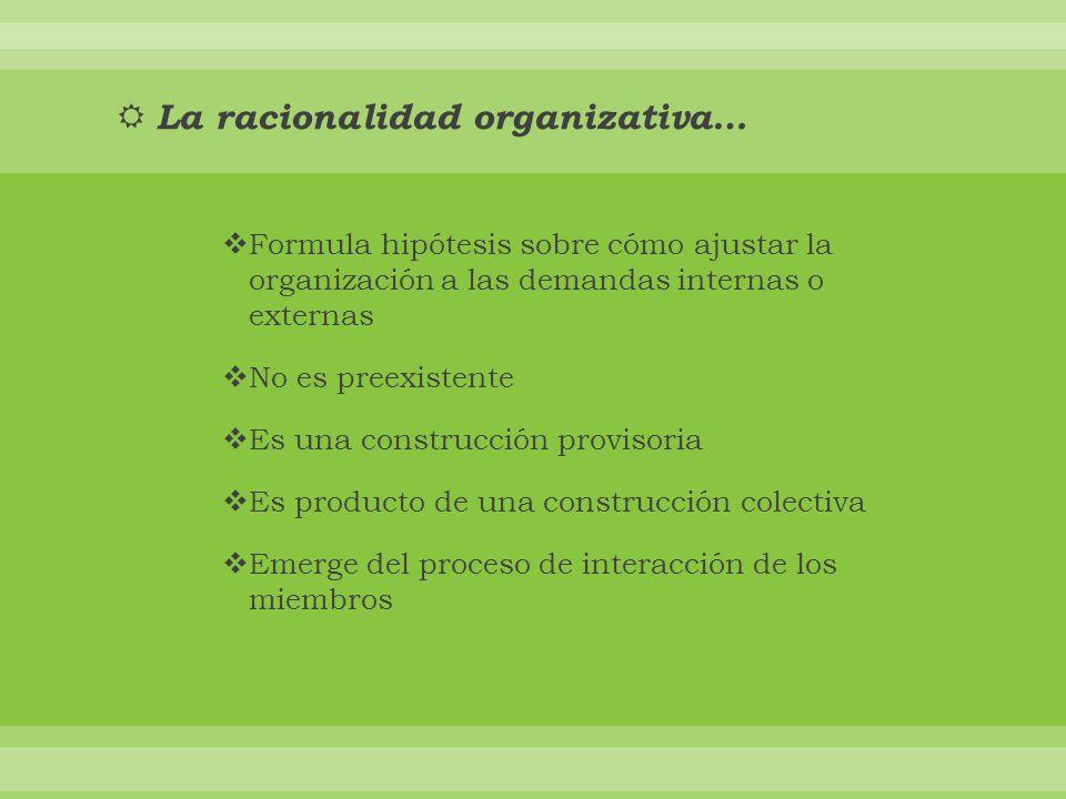 La racionalidad organizativa…
