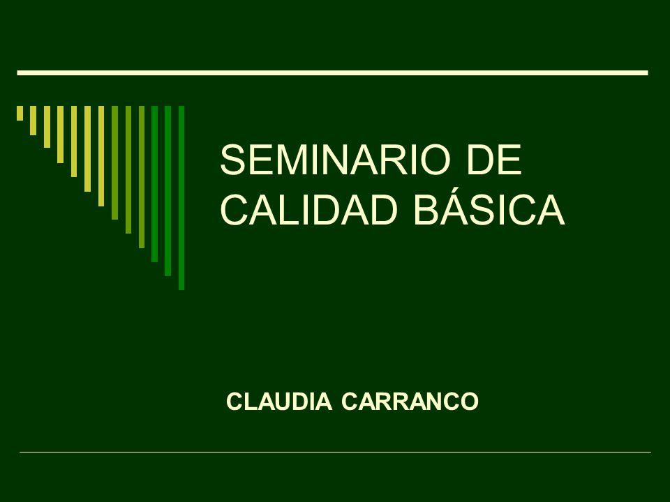 SEMINARIO DE CALIDAD BÁSICA