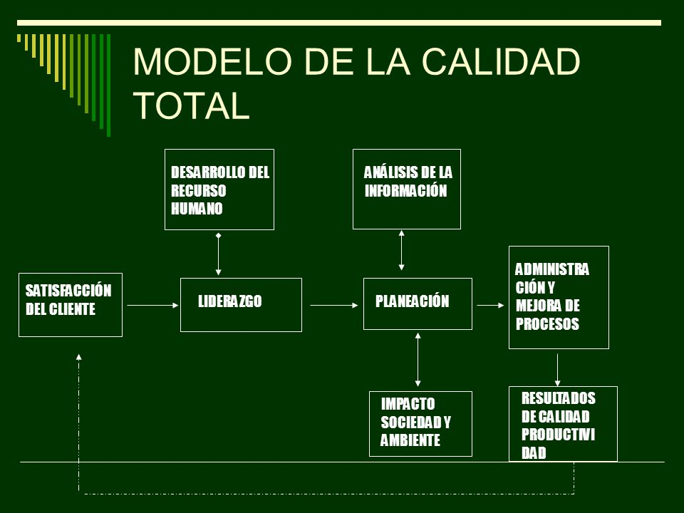 MODELO DE LA CALIDAD TOTAL