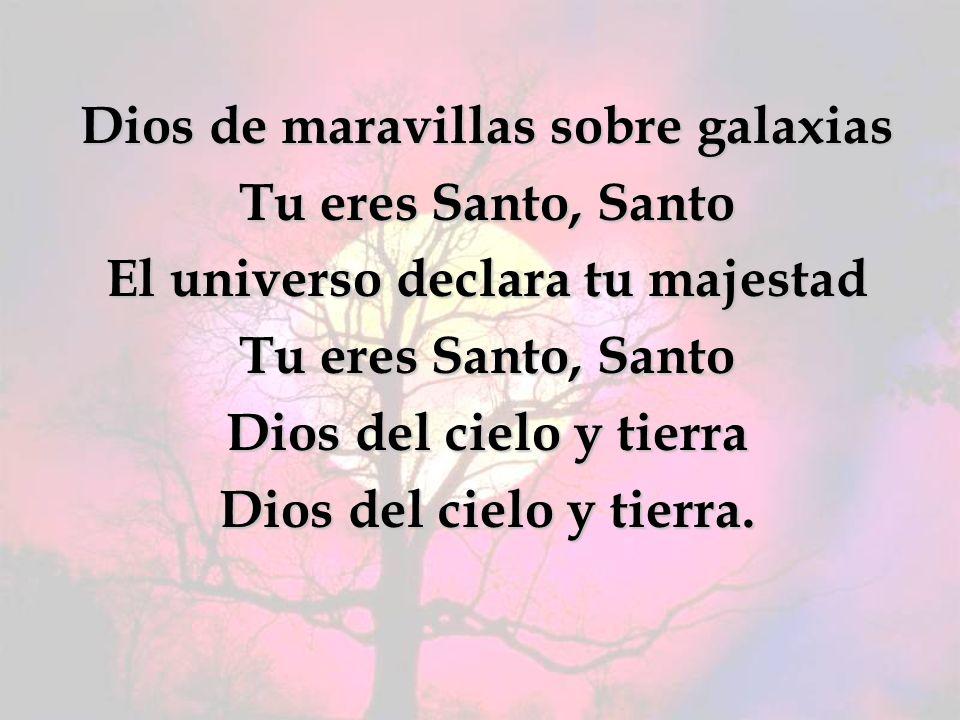 Dios de maravillas sobre galaxias Tu eres Santo, Santo El universo declara tu majestad Dios del cielo y tierra Dios del cielo y tierra.