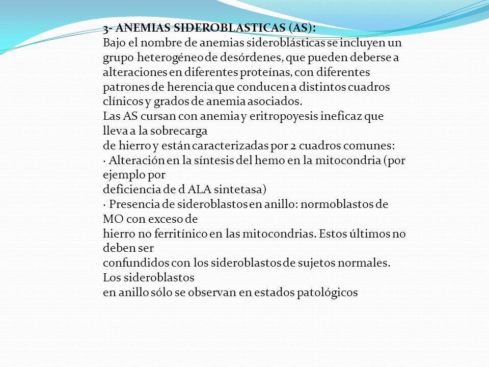 3- ANEMIAS SIDEROBLASTICAS (AS):