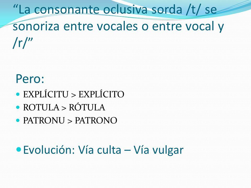 La consonante oclusiva sorda /t/ se sonoriza entre vocales o entre vocal y /r/