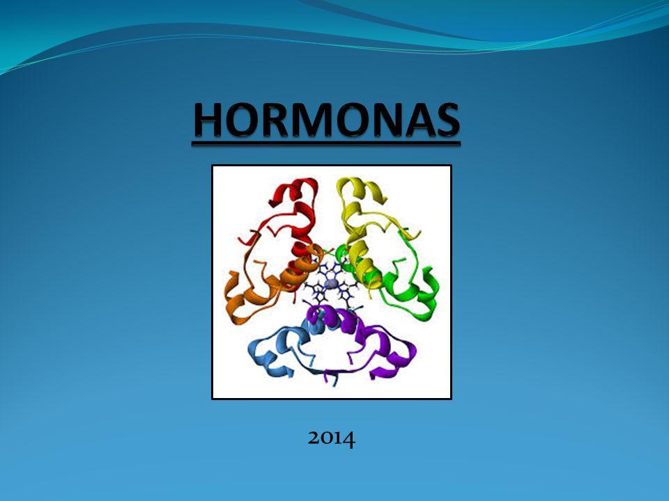 HORMONAS 2014