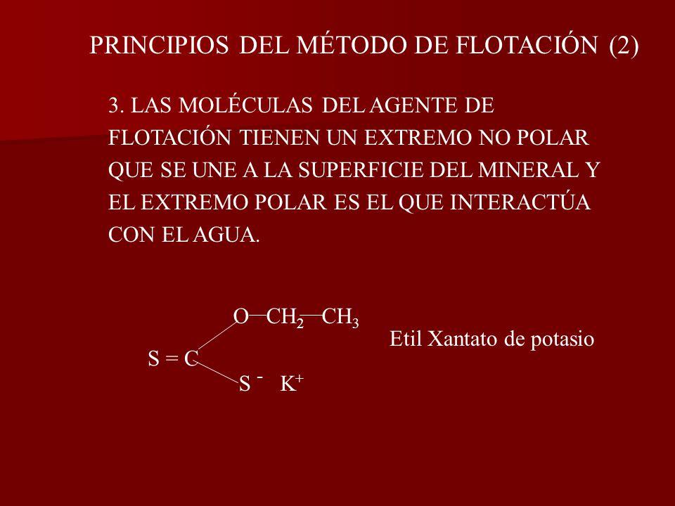PRINCIPIOS DEL MÉTODO DE FLOTACIÓN (2)