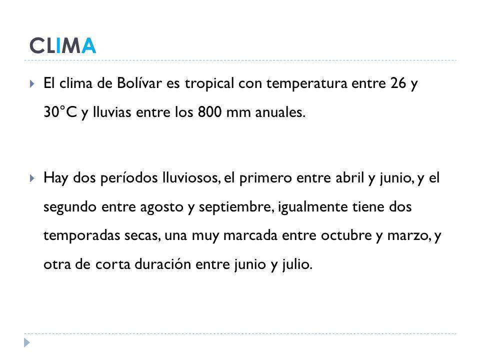 CLIMA El clima de Bolívar es tropical con temperatura entre 26 y 30°C y lluvias entre los 800 mm anuales.